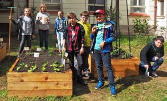 Projekt Garden Food