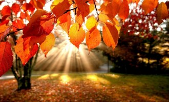 Barvy a krásy podzimu